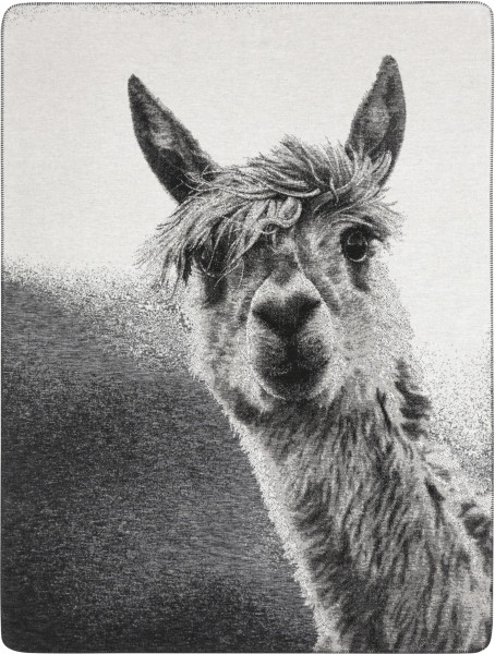 "Biederlack Wohndecke ""Animal Love"" - Pako"